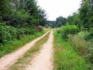 Fichtelnaabradweg